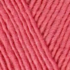 lamb's pride rosado rose